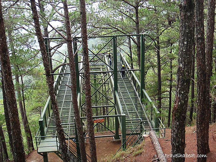 tree-top-adventure-baguio16