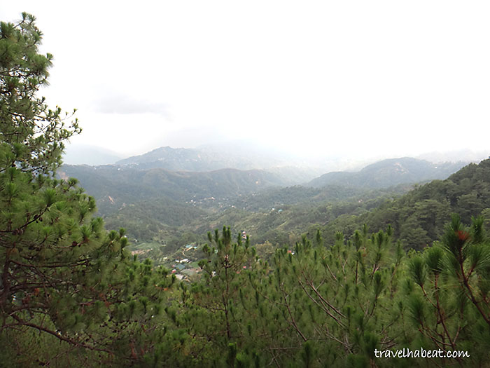 tree-top-adventure-baguio8