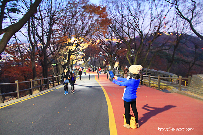 N Seoul Tower and the Locks of Love - Travel Habeat