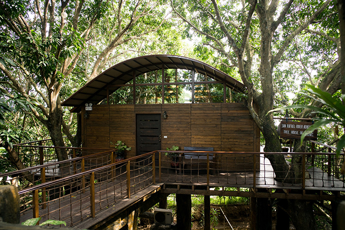 Tree House with Jacuzzi