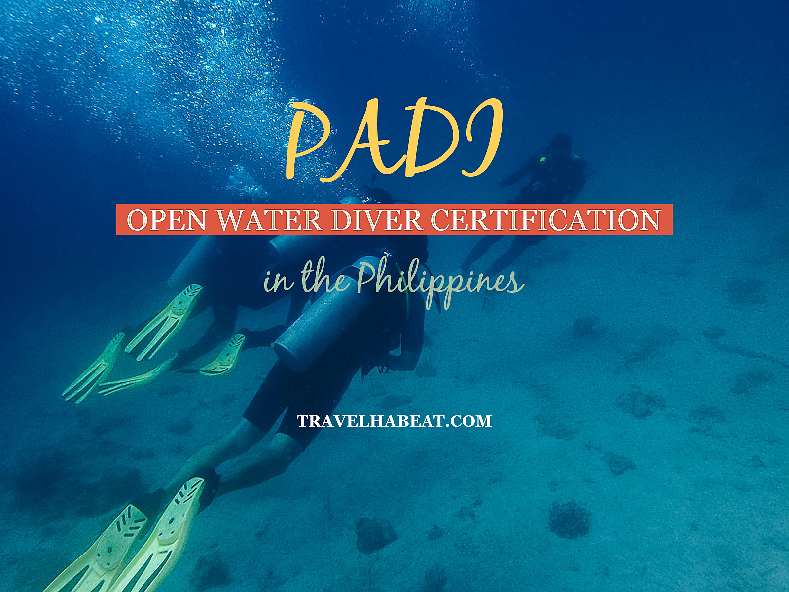 Padi Open Water Diver Certification Travel Habeat